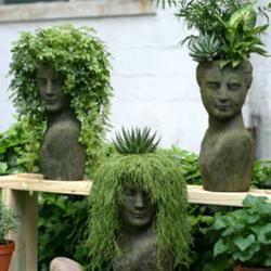 Statue plantersGardens Ideas, Head Planters, Container Gardens, Plants, Gardens Planters, Gardens Art, Green Hair, Small Gardens, Yards