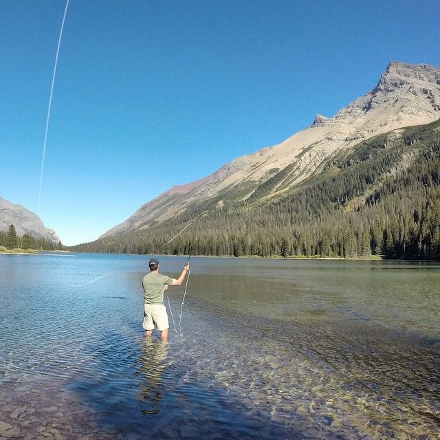 26 best arctic grayling images on pinterest arctic for Fly fishing glacier national park