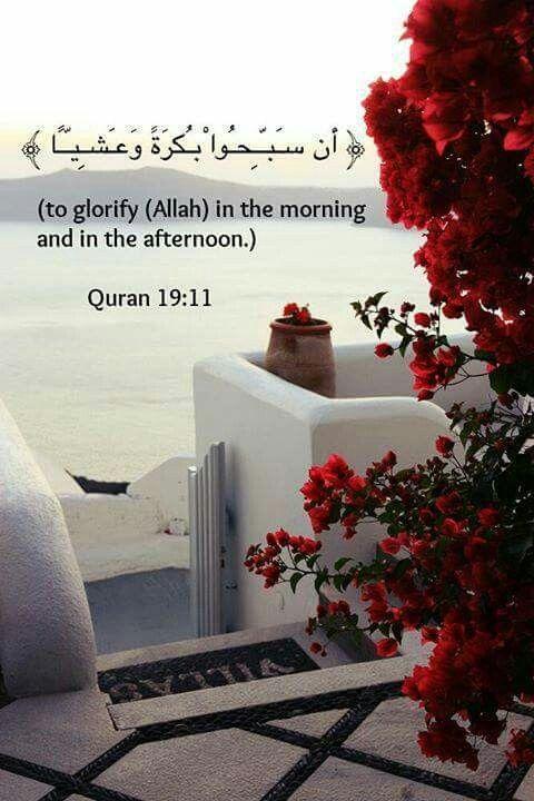 Quran ♥ قرآن Quran 19:11