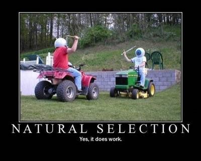 LOLDarwin Awards, Funny Things, Funny Pictures, Boys Are Stupid, Nature Selection, Demotivational Posters, Funny Stuff, Motivation Posters, Lawns Mower