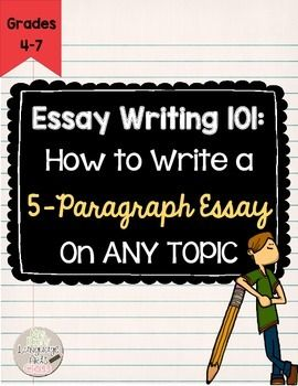 What should be my three arguments in my essay?