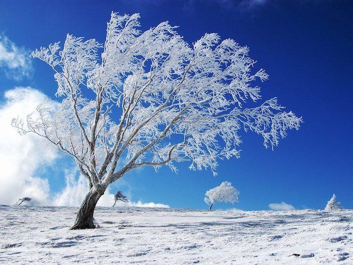 1001 Ideen Zum Thema Tolle Winterbilder Und Winterspruche Hintergrundbilder Winter Wallpaper Fur Desktop Computer Wallpaper Hd