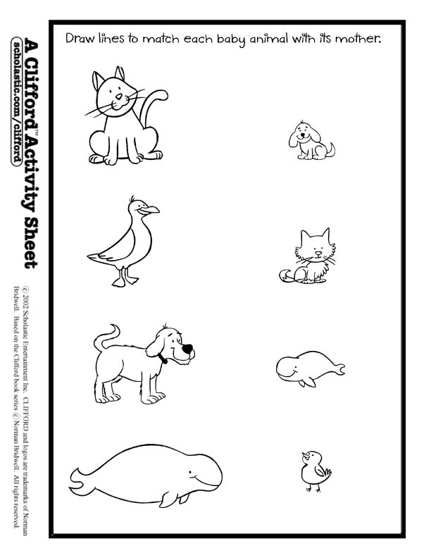 baby animals match activity sheet animals theme misc ideas animal worksheets animal. Black Bedroom Furniture Sets. Home Design Ideas