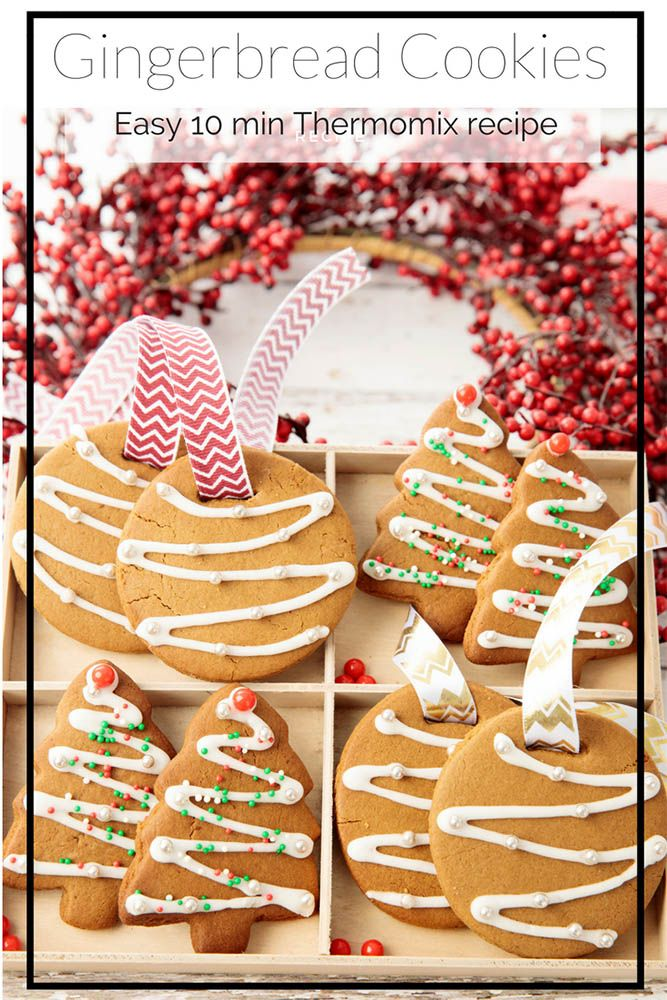 Thermomix Christmas Gingerbread Cookie Recipe Thermomix Baking
