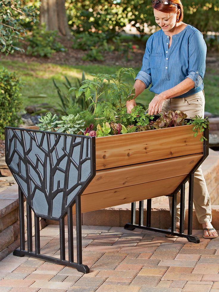 1000 ideas about garden beds on pinterest raised gardens raised