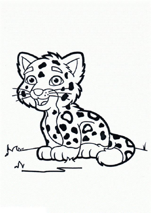 Leopardo para colorear - Dibujos para colorear