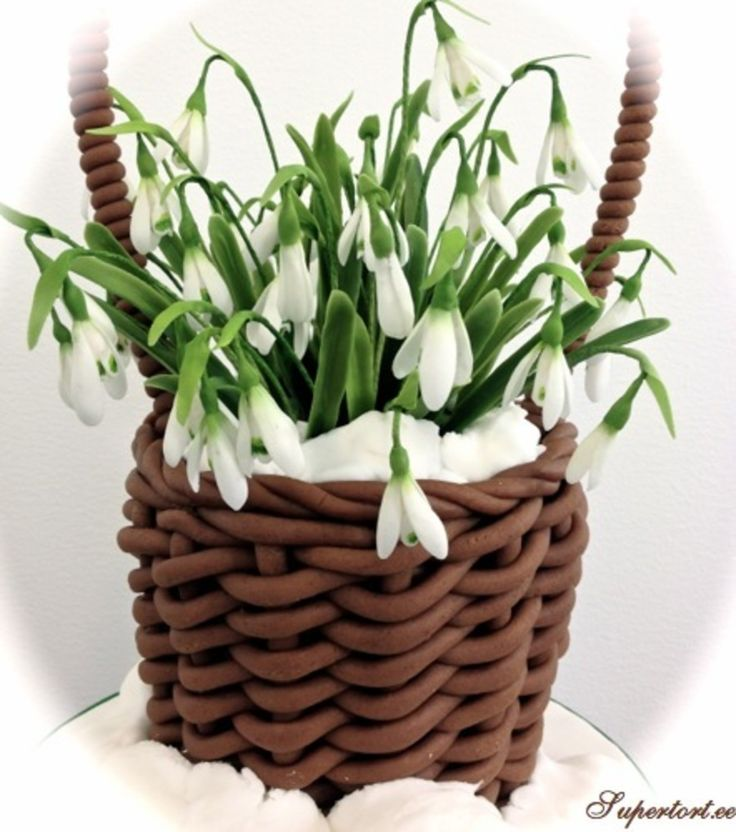 There is a cake inside the basket. Snowdrops are sugar. | spring cake ...