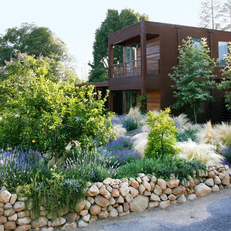 17 best images about xeriscape designs on pinterest for Natural landscaping ideas front yard