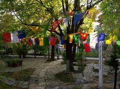 Tibetan_prayer_flags,_Norbulingka_Gardens,_Norbulingka_Institute,_Sidhpur,_Dharamsala