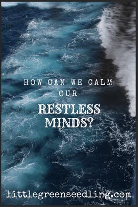 Discussing how we can use meditation and other techniques to calm our restless minds - and why they have become so restless in the first place.