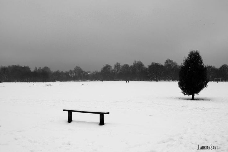 Soledad - Loneliness - 孤单 - 외로움 - 孤独 Regent Park - London