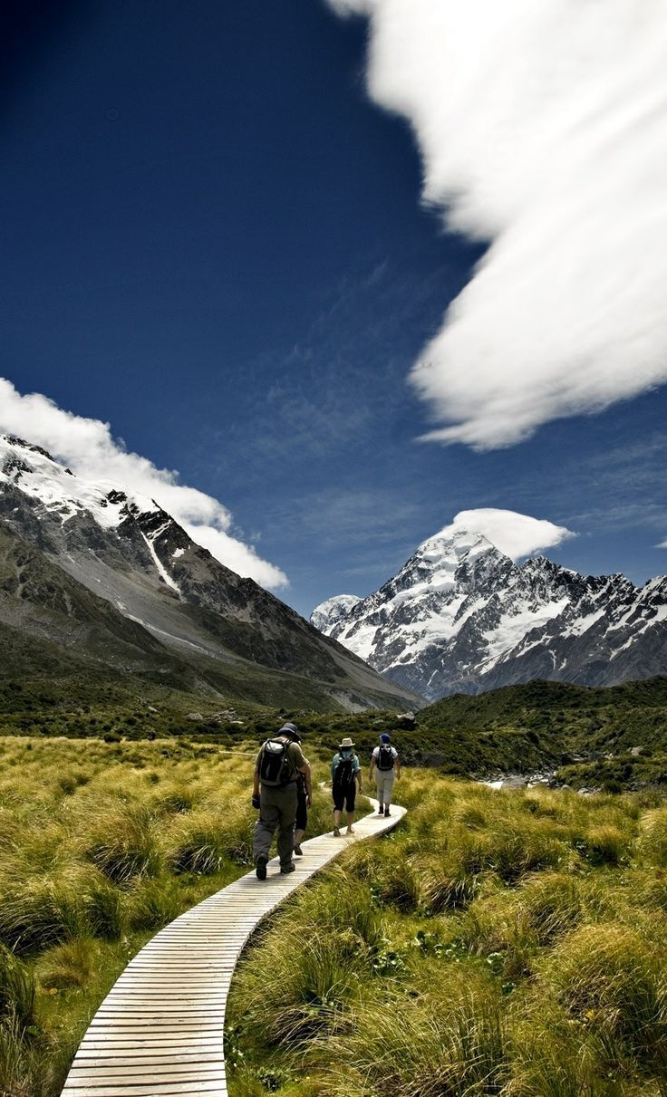 Travel Inspiration for New Zealand - Aoraki-Mt. Cook boardwalk, New Zealand