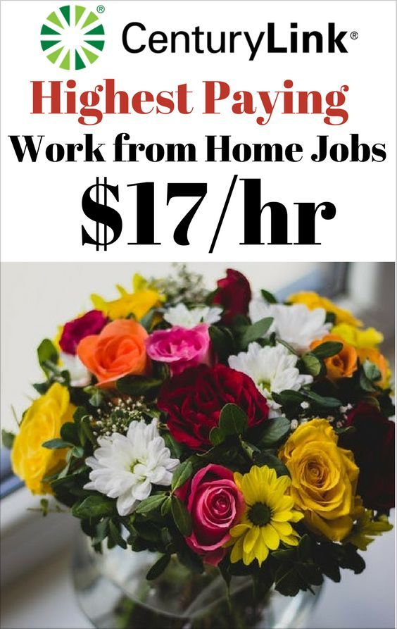 Work from Home Jobs Highest Paying – Work from Hom…