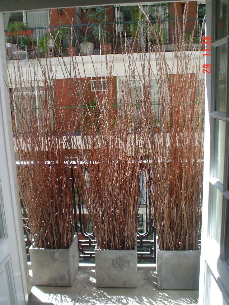 Jardin Decocasa » 2008 » octubre