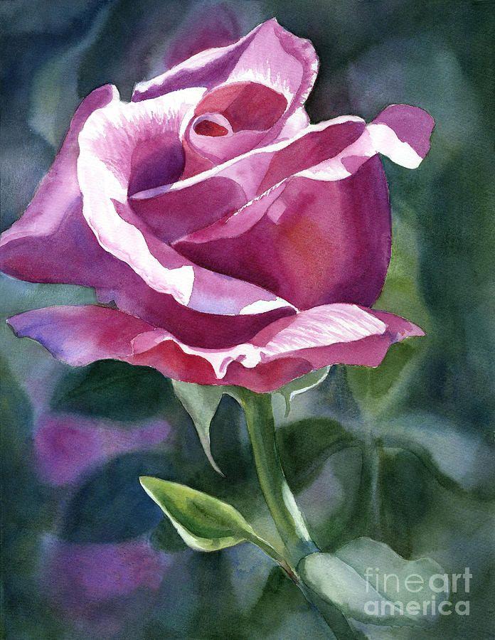 Rose Violet Bud Canvas Print / Canvas Art by Sharon Freeman