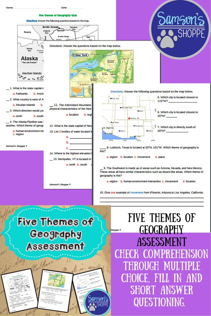 Five Themes of Geography Assessment | Five themes of ...
