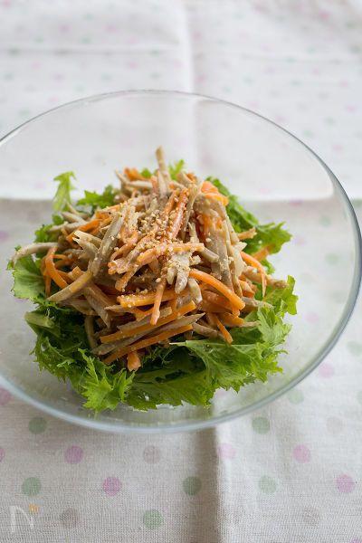 ごぼうとにんじんのシンプルサラダ。  味噌マヨネーズのまろやかな味に、わさび菜のピリッとした辛みもよく合います。  お弁当のおかずや、サンドイッチの具に使っても♪