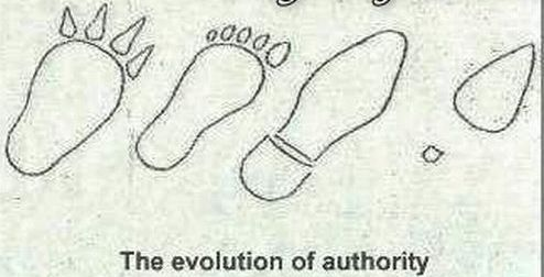 The evolution of authority