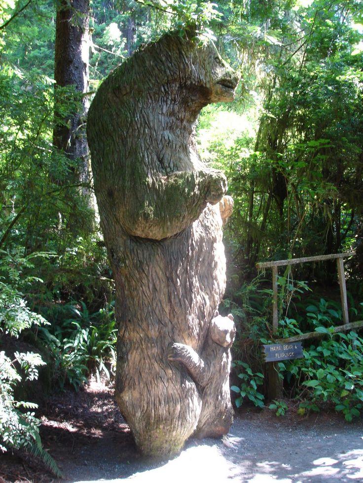Redwood National Park California Https Www Nps Gov Redw