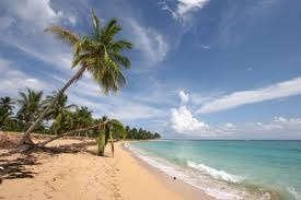 Dominicaanse Republiek: Zon, zee, strand, heerlijke muziek en heeeeele mooie mannen.