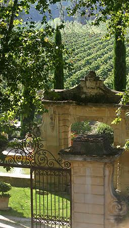 *Bed and Breakfast - Chateau Talaud, Avignon, France is surrounded by it's own vineyard