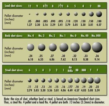 Shot Size Chart | FIREARMS | Pinterest | Bullets and Charts