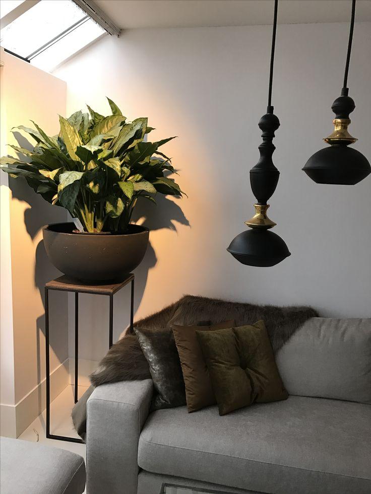 Beetje groen in huis!  Pot in plant, Jacco Maris BenBen hanglampjes, sober en sjiek kussens