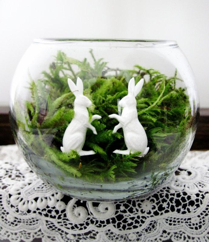 Thru monday cottage chic terrarium the white rabbit