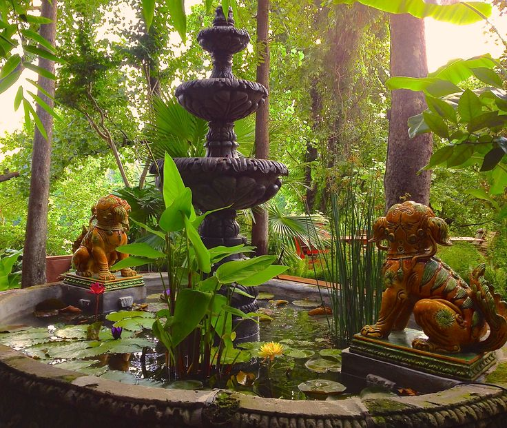 This is what I want! An above ground pond with a tiered fountain in the middle. Waterlily Fountain