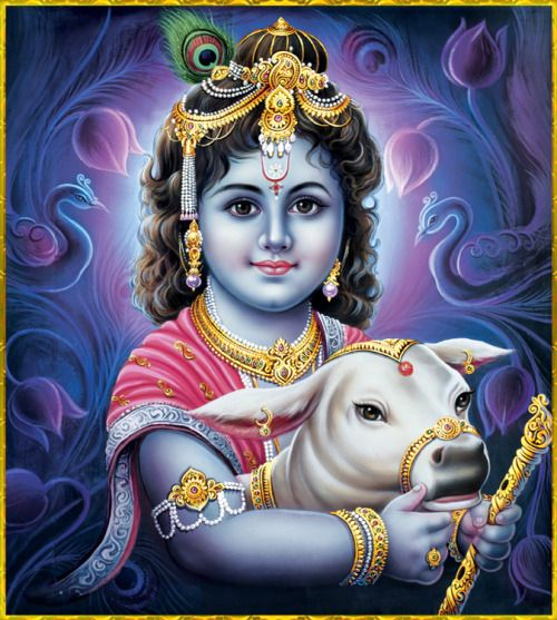 "☀ GOPAL KRISHNA ॐ ☀ http://careforcows.org/ ""O people of faith! O people of faith! By the order of Lord Gauranga, O brothers, I beg these three requests of you: Chant ""Krishna!"", worship Krishna, and teach others about Krishna.""~Nadiya Godrume..."