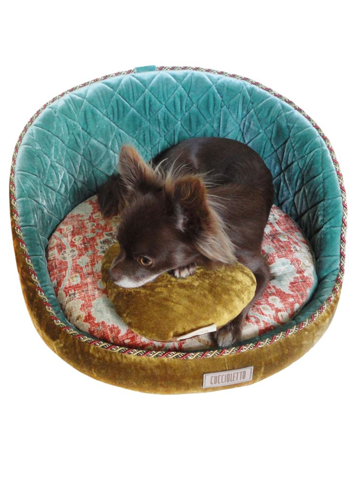Exclusively designed round pet couch
