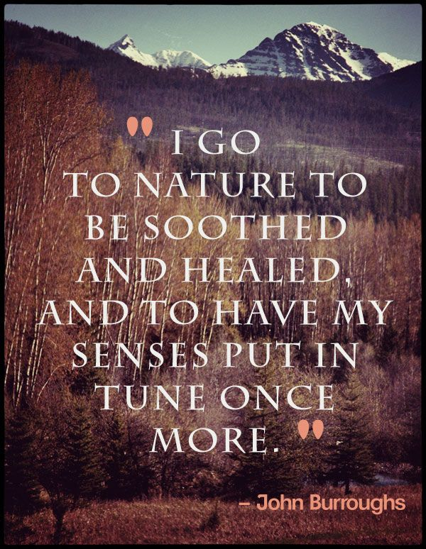 Yes. :: I go to nature to be soothed and healed and to have my sense put in tune once more. -John Burroughs