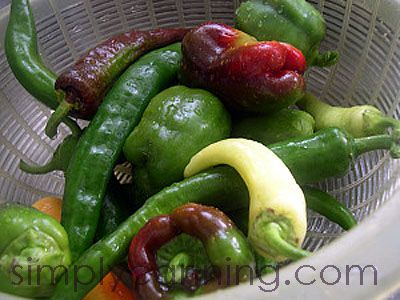 Canning Peppers, How to can hot or mild peppers in a pressure canner.: