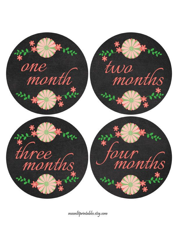 Chalkboard Monthly Age Stickers Chalkboard Coral Baby Stickers First Year Stickers New Mom Gift Coral Baby Nursery Decor (310) (8.00 USD) by MoonLitPrintables