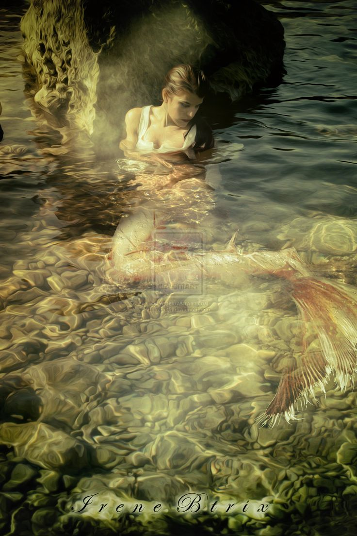 265 best mermaid photography images on pinterest little mermaids