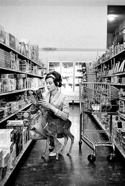 Because you can never have enough pics of Audrey Hepburn grocery shopping in a supermarket with a baby deer. Photo by Bob Willoughby.