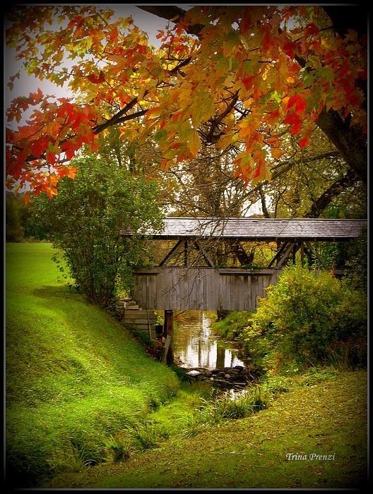 Little Covered Bridge by Trina Prenzi art-my-photography-by-trina-prenzi