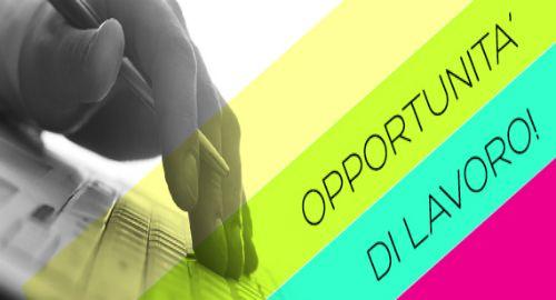 offerta di lavoro professioni Web: KetchApp International