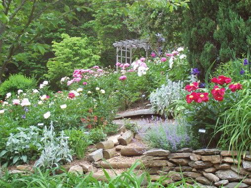 Rose Garden Ideas rose garden landscaping ideas google search Find This Pin And More On Ideas To Make A Rose Garden
