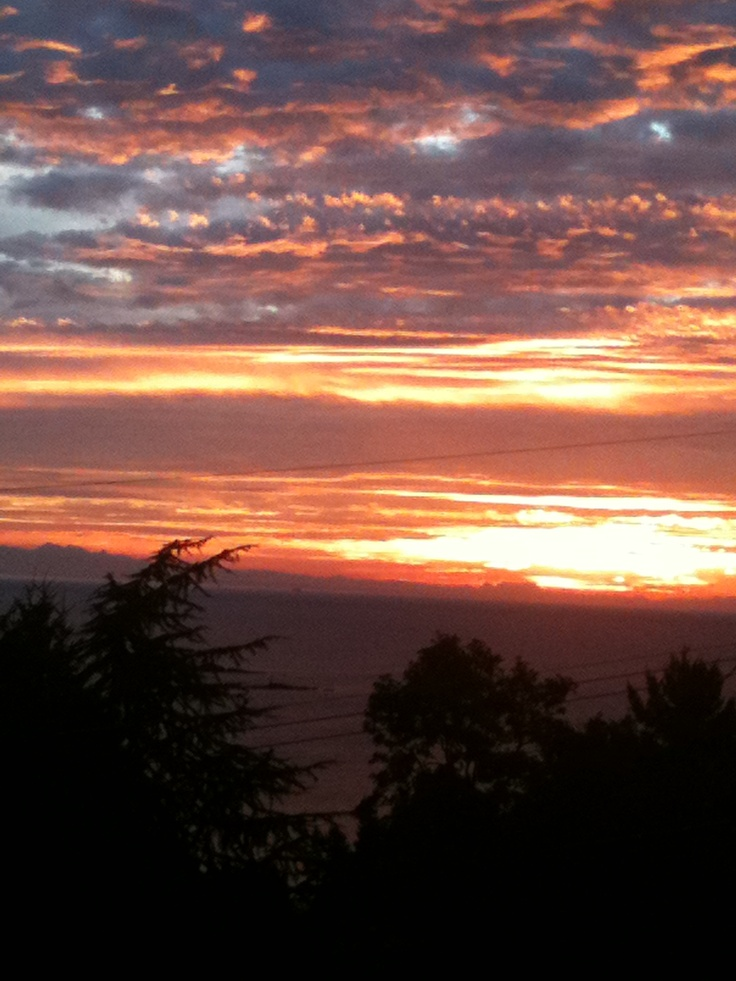 Sunrise in Nanaimo #wisemarketplace #sunriseIts beautiful here but we get lots of rain too.Makes for lots of green.