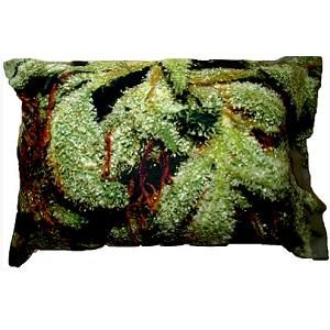 Research Finds Cannabis Helpful In Treating Sleep Apnea