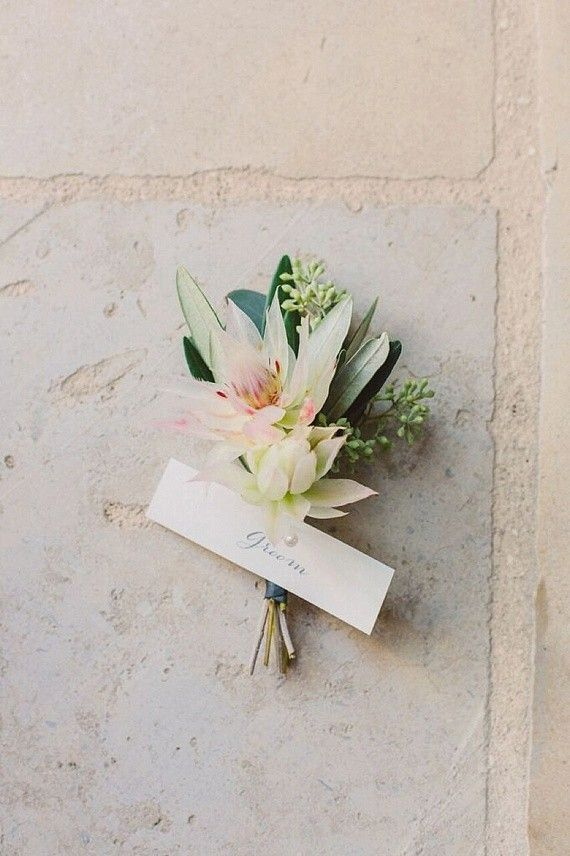 Best 25 wedding boutonniere ideas on pinterest boutonnieres wedding boutonniere blushing bride protea and olive junglespirit Image collections