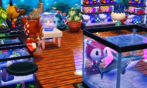 My aquarium shop