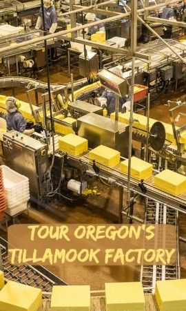 Tillamook Cheese Factory tour, Tillamook Oregon. I love cheese, so how could we resist stopping at the Tillamook factory. What we found was a production line that turns out 171,000 pounds of cheese per day. See more at: http://www.albomadventures.com/tillamook/