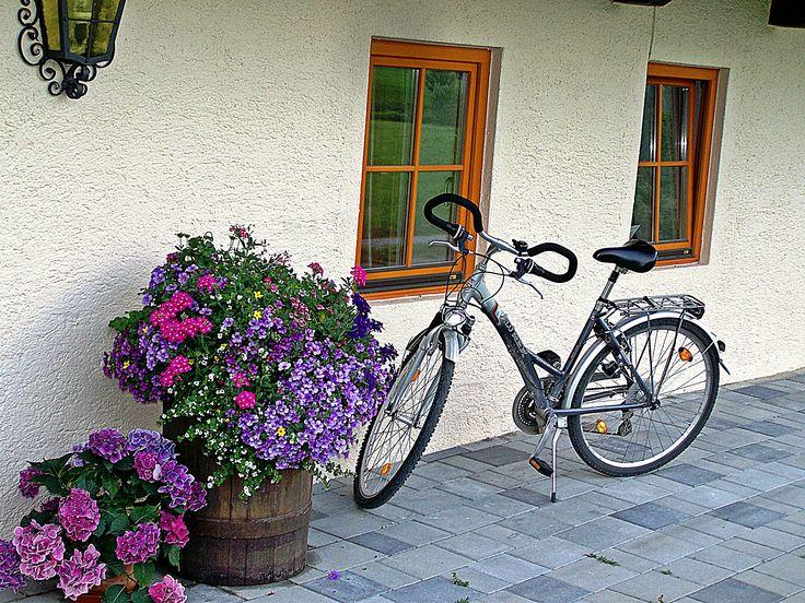 Still Life in Blue - Austria.