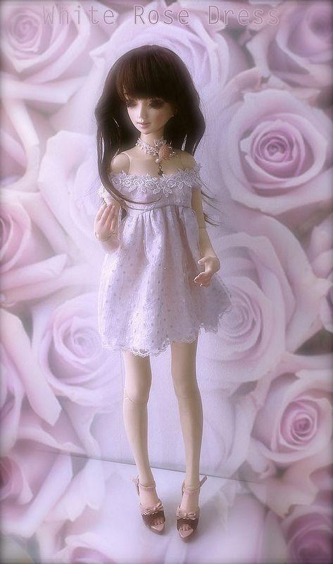 White Rose SD size