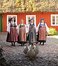 Regional costumes from southern Sweden