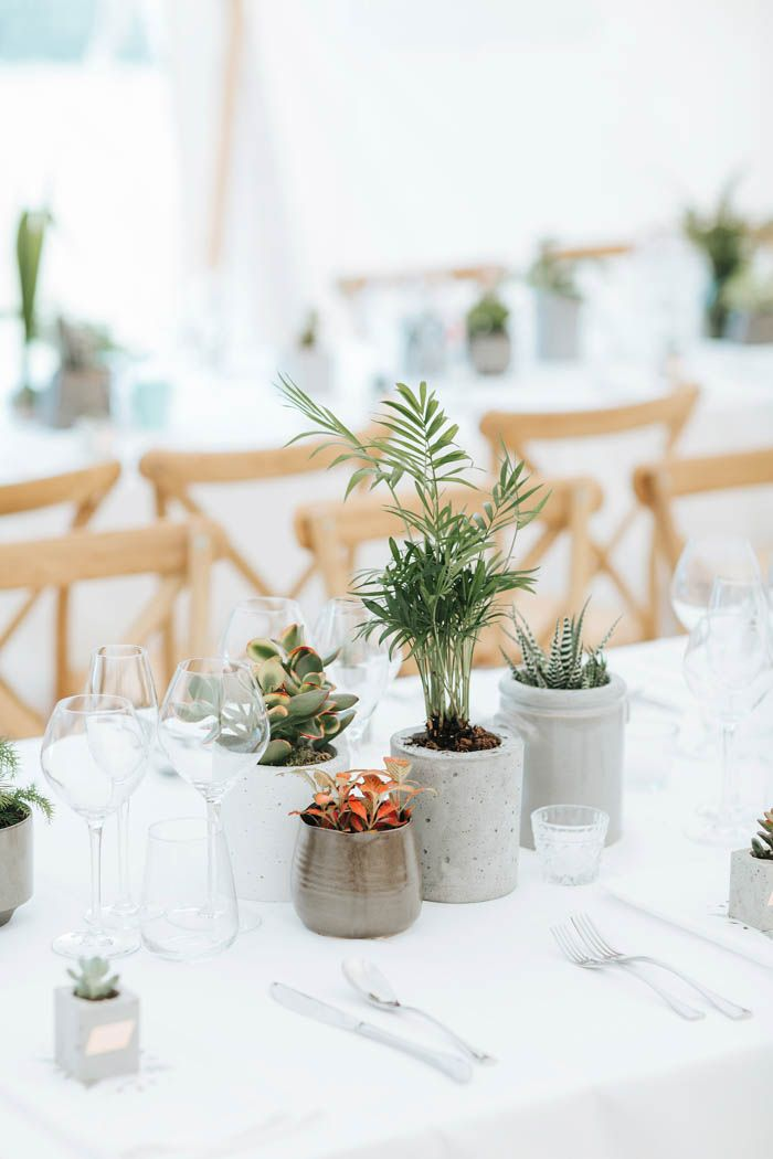 Minimalist wedding table decor - small potted plants | Image by Miss Gen Photography