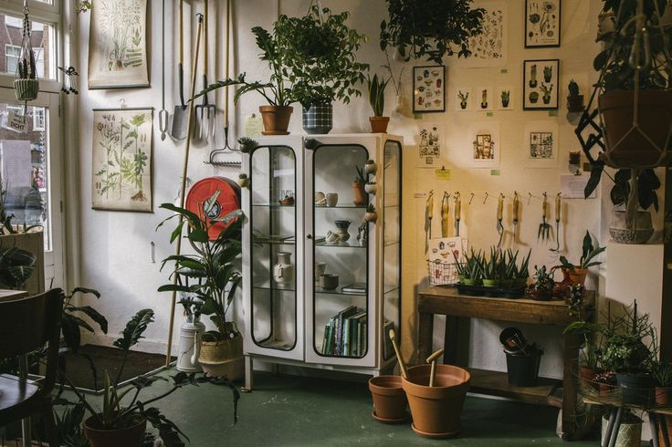 Wildernis is 'a cityjungle' in Amsterdam, with lots of plants, botanical prints, tea, coffee, cake, workshops, plant hangers and so on. You can even hop in for some plant advice. They are very helpful. Everything in this store is about plants. And don't forget to try one of their delicious cakes or brownies!