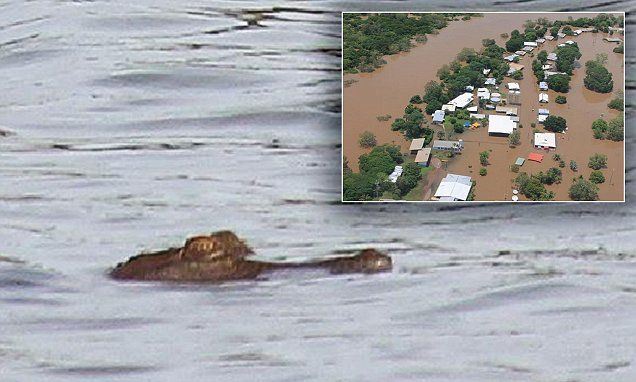 Crocodiles spotted swimming near PRIMARY SCHOOL on the edge of Darwin